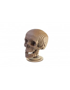 ALBUM SKULL WITH MODEL 3D 3 PL D-4